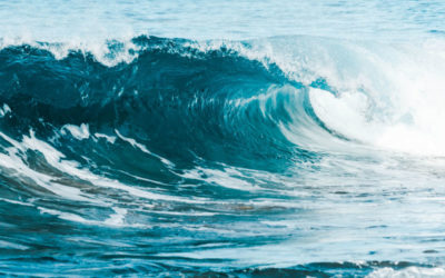 Innovative Wave Technology Supported by Mitacs Accelerate Program